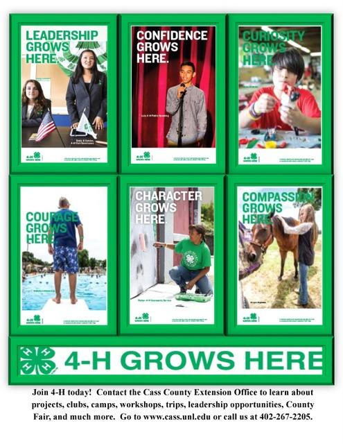 4H Enrollment flyer