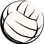 volleyball 307323 340 copy